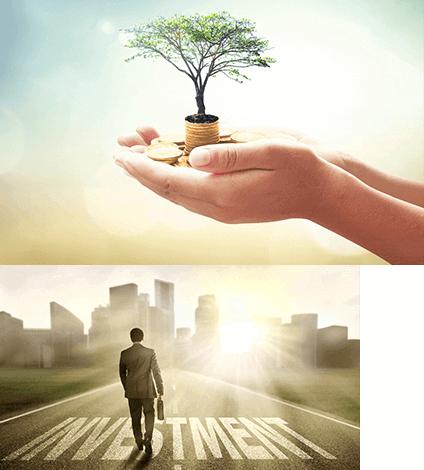 אפשרויות השקעה