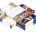שטרות הלוואה לצורך רכישת עסק פעיל